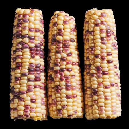 Purple Corn 3 Ea