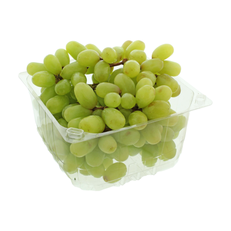 Cotton Candy Grape 1 Pack