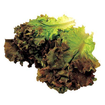 Red Leaf Lettuce 1 Bunch
