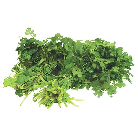 Cilantro 1 bunch