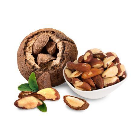 Raw Organic Brazil Nuts 8oz(227g)