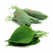 Perilla Leaves 3 Bunches, 깻잎 3묶음, 紫蘇葉 3束