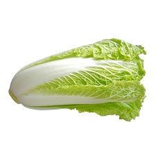 Nappa Cabbage 1 Ea (2lb), 나파 배추 1 Ea (2lb)