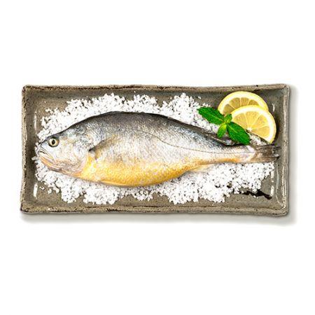 Salted Yellow Corvina Whole Fish 0.7-0.8lb(317-362g) 1 Pc