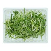 Sliced Scallion 1 Pack