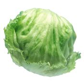 Iceberg Lettuce 1 Ea