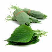 Perilla Leaves 3 Bunches (36 Leaves)