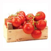 Stem Tomato 1lb(454g)