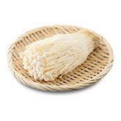 Enoki Mushroom 1 Pack