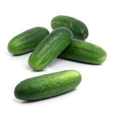 Kirby Cucumber 1lb(454g)